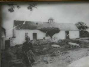 front of the house at Dreenagh